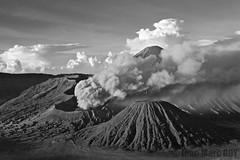 Indonesie, Java, Bromo (jmroyphoto) Tags: bromo cemorolawang fumee indonesie java jmroyphoto montpananjakan nb noiretblanc nuages ombres semeru tengger volcan