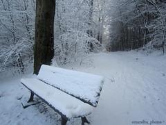 Höchen Saarland Germany (@omarsilva_photos) Tags: schnee winter naturaleza snow germany deutschland nieve ngc haus bosque montaña libre saarland airelibre serenidad carreteras armonia höchen omarsilvaphotos hochenberg