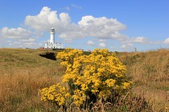 Flamborough Head Lighthouse (BillyGoat75) Tags: lighthouse eastcoast flamboroughhead eastriding