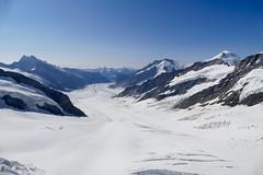 Aletschgletscher / Aletsch Glacier Switzerland (roli_b) Tags: helikopter rundflug alpenrundflug schweiz helicopter swiss alps lucerne alpenpanorama panorama berge mountains aletschgletscher jungfrau luftaufnahme helikopterrundflug panoramflug schweizeralpen swissalps jungfrauregion berneroberland aletsch glacier glaciar alp alpen vailais wallis aerial view window luftbild