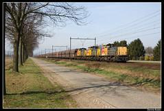 RN-6401+6434+6428+kolentrein_Hrt_20032005 (Dennis Koster) Tags: horst trein dbs railion 6401 6434 6428 goederentrein kolentrein dbschenker