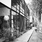 charles and ray eames house thumbnail