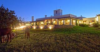 Argentina Dove Lodge 27