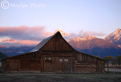 Sunrise at T A Moulton Homestead-Grand Tetons WY (66) (moelynphotos) Tags: mountains sunrise scenery earlymorning explore wyoming grandtetons grandtetonnationalpark grandtetonsnationalpark mormonrow moelynphotos tamoultonhomestead