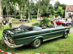Mercedes 250 SE 1966 - Dortmund Schloss Westhusen_9108_2015-08-09 (linie305) Tags: auto castle classic cars car vintage mercedes automobile meeting convertible autoshow 1966 vehicles event german vehicle oldtimer autos schloss oldtimers cabrio ruhrgebiet dortmund carshow treffen germancar cabriolet fahrzeuge ruhrarea ruhrpott automobil 2015 autotreffen 250se kraftfahrzeuge worldcars carmeeting westhusen schlosswesthusen dortmundclassicdays cartreffen radfahrzeuge castlewesthusen