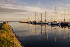Golden Reflection (parkerbernd) Tags: light sunset reflection port germany boats island lumix golden sailing harbour jetty ships panasonic mole fehmarn lineup orth gx1