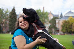 Working Dog (Luna Lupin) Tags: dog black dogs for hug lab university blind yawn guide gonzaga