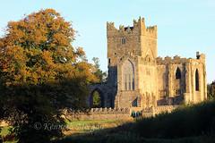 Tintern Abbey (Ken Meegan) Tags: ireland abbey tinternabbey cowexford cistercianabbey saltmills