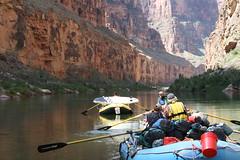 grand canyon2015 256