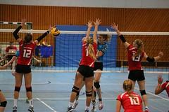 20151024 BSP MTV Stuttgart vs. VC Wiesbaden II (WLK_G) Tags: geotagged deutschland volleyball deu badenwrttemberg stuttgartbotnang motivstuttgart geo:lat=4878599321 geo:lon=913143039 bspmtvstuttgart vcwiesbadenii 3bundesligasd