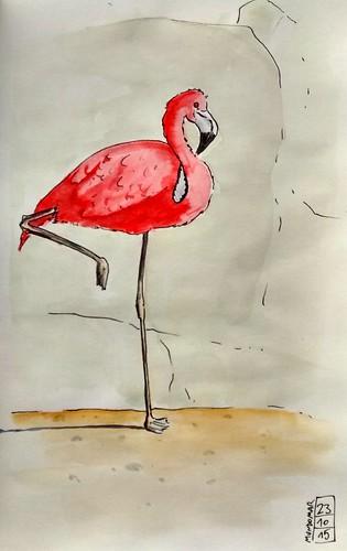 Flamenco #1/Flamingo #1