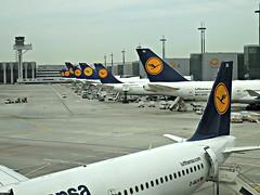 LH @ FRA (kenjet) Tags: logo airport ramp jets terminal retro airline airbus lh boeing flughafen lufthansa 747 tails fra airliner 747400 a319 frankfurtairport eddf 747430 a319100 a319114 747800 flughafenfrankfurtammain dailn dabyt