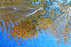 Herbstspiegelung 1 (DianaFE) Tags: herbst laub dianafe dianae bunt
