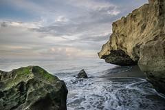 Beauty (katie_sokoloff) Tags: dslr bird waves beauty love breeze orange d3300 35mm algae sun warm clouds sky green florida beach sea ocean water rocks
