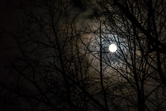 Moon Though The Tree (brian_barney9021) Tags: moon tree branches night silhouette nikon d3200 clouds cloud gloomy long exposure dark tamron lens 90mm