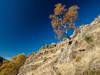2016-11-01_Pui_Tabaca-66 (Engarrista.com) Tags: anàs estaon nibrós pallars pallarssobirà pirineus pirineuspaïsoscatalans puitabaca serramitjana valldestaon valldecardós caminada caminades