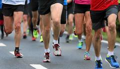 Hallwilerseelauf: Kniestudien beim  Halmarathon