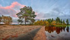 DSC_0909   With Light (NordVei) Tags: with light lapland lappi hetta finland tree lake stone beach sky color veikko nordman cloud evening sunset outside