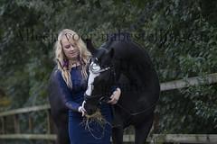 15 oktober 2016-152 (MZorro4) Tags: mariekehaverfotografie oudesluis schagen paardenfotografie portretfotos rijden wwwmariekehaverfotografienlpaarden