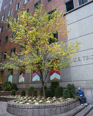 POPS085: Landscaped Pedestrian Plaza, 1185 Sixth Avenue, Theater District, Midtown Manhattan, New York City (jag9889) Tags: jag9889 usa landscaped plaza manhattan midtown pedestrian newyorkcity theatredistrict newyork outdoor pops 20161128 1185sixthavenue 2016 ny nyc popos privatelyownedpublicspace publicspace unitedstates unitedstatesofamerica us