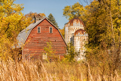 Surrounded By Gold (henryhintermeister) Tags: barns minnesota oldbarns clouds farming countryliving country sunsets storms sunrises pastures nostalgia skies outdoors seasons moramn field