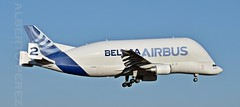Airbus Airbus A300B4-608ST Super Transporter (F-GSTB) (alberto vtr) Tags: airbus a300b4608st super transporter fgstb a 300 a300a300 avion plane base aerea de getafe aterrizaje beluga ballena spotter spotters spotting aereo nikon d5300
