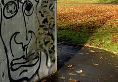TribalDeity (Tony Tooth) Tags: nikon d7100 tamron 2470mm graffiti broughpark leek staffs staffordshire streetart