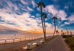 Giants (meeyak) Tags: trees palmtrees seascape landscape hb huntingtonbeach oc orangecounty westcoast clouds cloudy path bike road meeyak nikon d800 1635mm california sunset fall autumn warm travel vacation outdoors adventure fun relaxing view