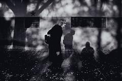 old girl and her shadow (Zlatko Vickovic) Tags: streetstreetphoto streetphotography streetphotographybw streetbw streetphotobw blackandwhite monochrome zlatkovickovic zlatkovickovicphotography novisad serbia vojvodina srbija