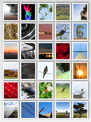Project 366 November (AdaMoorePhotography) Tags: nikon d7200 18105mm