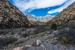 048-RRC160201_46981 (LDELD) Tags: nevada desert rugged dry harsh wild lasvegas redrocknationalconservationarea mountains cliff snow