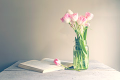 Keeping it Simple (Elizabeth_211) Tags: pink 2470mm naturallight book tulips flowers stilllife