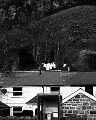 Llieiniau ar y lein ddillad (Rhisiart Hincks) Tags: leinddillad clothesline towels searbhadairean tiez taighean tai etxeak houses maisons duagwyn gwennhadu dubhagusgeal dubhagusbán zuribeltz czarnobiałe blancinegre blancetnoir blancoynegro blackandwhite 黒と白 zwartenwit mustajavalkoinen crnoibelo černáabílá schwarzundweis اسودوابيض، bw feketefehér melnsunbalts juodairbalta negrușialb siyahvebeyaz črnoinbelo черноеибелое чорнийібілий blaenauffestiniog meirionnydd gwynedd ewrop europe europa kembra wales cymru a'chuimrigh kembre gales galles anbhreatainbheag 威爾斯 威尔士 wallis uels kimrio valbretland 웨일즈 велс gallas walia เวลส์ ويلز uells ουαλία velsa velsas уельс уэльс уелс ウェールズ 威爾士