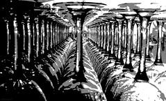 otra copita de vino? (paramonguino) Tags: p1200358jpg1 tenerife islascanarias canaryislands kanarischeinseln copa vino wein
