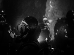 Scuba Diver (Jon Cartledge) Tags: scuba diver fish people thirds four micro m43 black lens digital olympus omd em5 white bw m45mm f18 45mm melbourne aquarium giant tank mono darkness diving scubas swimming wow fishies