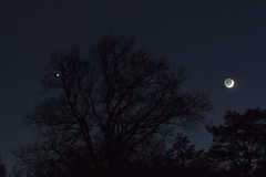 20161202_Rapprochement Lune Venus (Clapiotte_Astro) Tags: moon lune venus night nuit canon700d tamron1750mm canon70200mm rapprochement rencontre