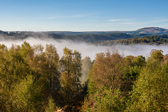Lingering Mist, David Marshall Lodge (Sarah-86) Tags: nikond810 landscape scotland autumn mist trossachs highland trees woodland