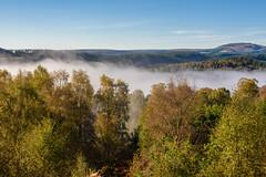 Lingering Mist, David Marshall Lodge (Sarah-86) Tags: nikond810 landscape scotland autumn mist trossachs highland trees woodland