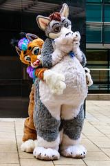 IMG_3933 (SGT.Tibbs) Tags: costumes london animal bar fur happy furry suits bright wine mascot furries colourful fleet passage fandom jamies furs fursuit fursuits londonfurs
