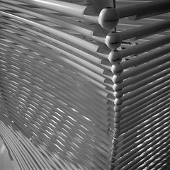 Spine (UberJ) Tags: city blackandwhite bw sculpture white black 120 6x6 film oklahoma statue metal gardens zeiss square outside downtown steel structure hasselblad f plus pan myriad 500 okc ilford repeat distagon myriadgardens 500cm panfplus distagon50mmf4