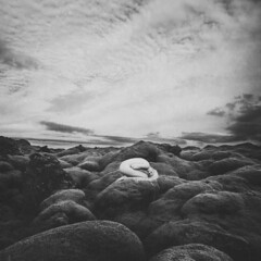 this is my home (Lieke Anna) Tags: blackandwhite white inspiration selfportrait black art nude grey iceland moss artistic strength conceptual vulnerable eldhraun mossfield