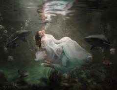 Shasta Submersion (wesome) Tags: redding ikelite underwaterportrait adamattoun