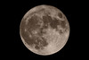 Supermoon, Nov. 14th 2016 (Lord Markus) Tags: moon supermoon luna superluna piena harvest full closest earth crateri craters terra mare tranquillitatis serenitatis imbrium fecunditatis crisum nectaris nubium 2016 november 14 europe italy italia catadiottrico mirror lens mto 1000 1000mm soviet ussr cccp mto11ca nikon d300s