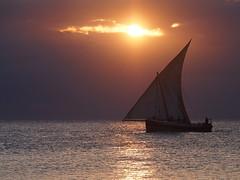 Zanzibar 2015 (hunbille) Tags: city sunset sea stone tanzania boats coast boat town zanzibar stonetown dhow unguja challengeyouwinner cyunanimous