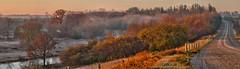 Good morning Grand River (virgil martin) Tags: panorama mist ontario canada river landscape fallcolors gimp grandriver goldenhour morningmist westmontrose microsoftice oloneo olympusomdem5