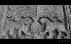 Lleons (PCB75) Tags: museum turkey museu madrasah kali trkiye central muse trkei madrassa turquia turkish kurdistan 1310 anatolia erzurum kurdish seljuks yakutiye medresesi ilkhanids  theodosiopolis manzikert selycidas hocayakut kurdistanatirkiy bakurkurdistan teodosipolis seljcides trkislameserleriveetnografyamzesi