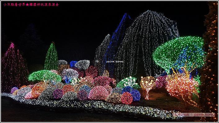 晨靜樹木園 五色星光庭園展 (7).jpg