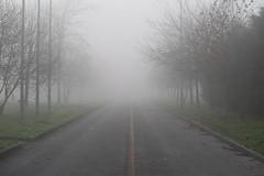 Nebbia (manuelematera) Tags: fog nebbia