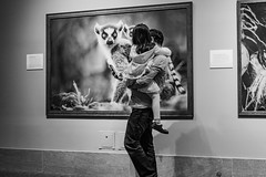 Animals watching visitors (thomas.j.f) Tags: blackandwhite washington father daughter museum nationalmuseumofnaturalhistory street funny animal photography vater tochter handy tiere