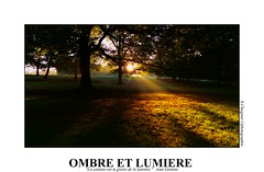 P2110309 (cowsandgirl71) Tags: panasonic fz200 france ombre lumire lumix landscape soleil rayons jaune vert